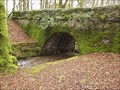 Image for Cholwichtown Bridge, near Cornwood, South West Dartmoor.