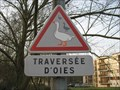 Image for Oies de passage à – Brunoy, France