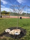 Image for Scott McLean Tree - Tillsonburg, ON
