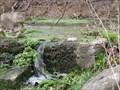 Image for BROCK - Spring