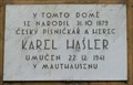 Image for Karel Hasler - Prague, Czech Republic