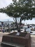 """Image for Lelaina """"Laney"""" Jaymes Fitzsimons - Annapolis, MD"""
