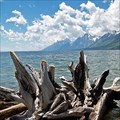 Image for Jackson Lake - Wyoming, USA