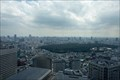 Image for View from the City Hall - Tokyo, Japan