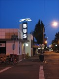 Image for Greyhound Station Neon - Corvallis Oregon
