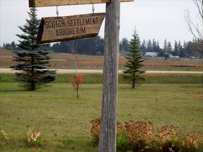 The Wooden Sign and a few spindly trees