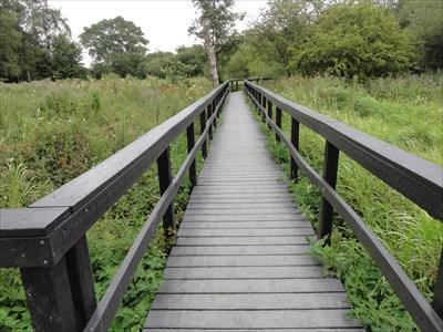 Fairburn Ings Nature Reserve - Fairburn, UK - Non-Coastal