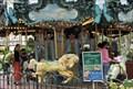 Image for Bryant Park Carousel
