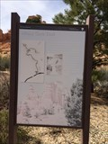 Image for Mossy Cave Trail - Scenic Byway 12 - Bryce, UT