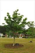 Image for Cheyenne Sauls - Douglasville, GA