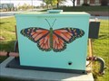 Image for Butterfly Box - KSU - Wichita, KS