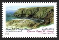 Image for Cape St. Mary's Ecological Reserve, Newfoundland
