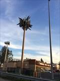 Image for Palm Tree - Orange, CA