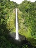 Image for Akaka Falls State Park - Honomu, HI