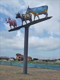 Image for Elevated Cows - Houston, TX