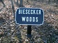 Image for Biesecker Woods - Cast Iron Site ID Tablet - Gettysburg National Military Park Historic District - Gettysburg, PA