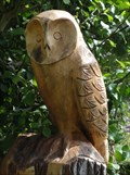 Image for Owl Tree Stump - Lancaster, UK