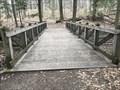 Image for Hemlock Crossing Footbridge #7 - West Olive, Michigan