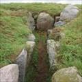 Image for Tonneshøj passage grave - Jylland, Denmark