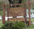 Image for Unadilla, New York