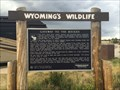 Image for Gateway to the Rockies - Laramie, WY
