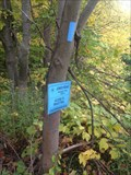 Image for Bruce Trail - Jones Road Access Trail - Stoney Creek, ON