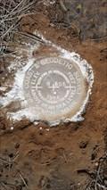 Image for MW0285 - USC&GS 'R 505' BM - Modoc County, CA