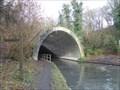 Image for South east portal - Summit tunnel - Wolverhampton level - Birmingham