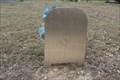 Image for Tina Kay Monck - Grove Hill Cemetery - Leonard, TX