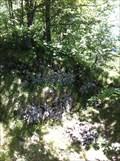 Image for Ruine Alt-Wildeptingen - Eptingen, BL, Switzerland