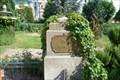 Image for Rose Garden - Marne La Valée, France