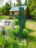 Image for Fiddling Frog - DeTour - Michigan.