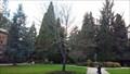 Image for David Frohnmayer - University of Oregon