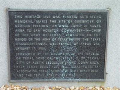 A DRT (Daughters of the Republic of Texas) marker. It is #20 on the San Jacinto Battlefield map.