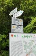 Image for Yellow Path Arrows - Rogów, Poland