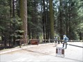 Image for Dorst Creek - Sequoia Nat'l Park - CA