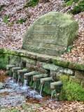 Image for Sieben Brunnen
