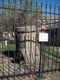 Image for Petrified Tree at Canadian County History Museum - El Reno, OK