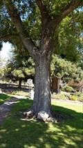 Image for George Washington - Monterey, CA