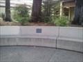 Image for Luotto's Grotto  - Cupertino, CA