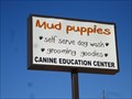 Image for Mud Puppies - Erie, PA