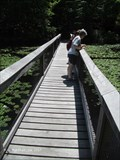 Image for Echo Pond Foot Bridge - TTOR Rocky Woods Reservation - Medfield, MA