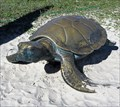 Image for Sea Turtle - Gulf State Park Pier, Gulf Shores, Alabama, USA.
