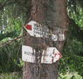 Image for Tree eating hiking signs - Tlsta hora, SK