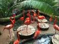 Image for Dallas World Aquarium - Dallas, TX, US