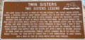 Image for Twin Sisters
