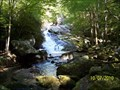 Image for Lynn Camp Prong Cascade - Great Smoky Mountains National Park, TN