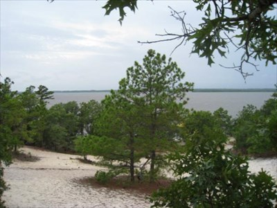 Atop Sugarloaf dune, overlooking the Cape Fear River at nearby Carolina Beach State Park.