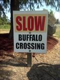 Image for Buffalo Crossing (w buffalo) - Haubstadt, IN