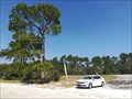Image for Leonard's Landing - Public Boat Ramp - Alligator Harbor, Florida, USA.